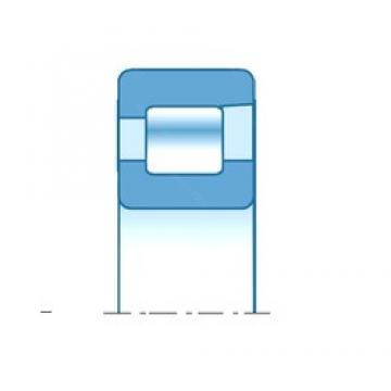 30,000 mm x 62,000 mm x 16,000 mm  30,000 mm x 62,000 mm x 16,000 mm  NTN NF206 cylindrical roller bearings