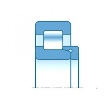 45,000 mm x 100,000 mm x 32,000 mm  45,000 mm x 100,000 mm x 32,000 mm  NTN NH309 cylindrical roller bearings