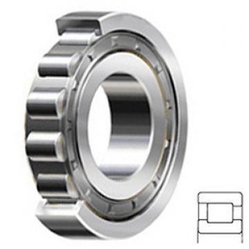 1.5 Inch | 38.1 Millimeter x 3.25 Inch | 82.55 Millimeter x 0.75 Inch | 19.05 Millimeter  1.5 Inch | 38.1 Millimeter x 3.25 Inch | 82.55 Millimeter x 0.75 Inch | 19.05 Millimeter  RHP BEARING LRJA1.1/2J  Cylindrical Roller Bearings