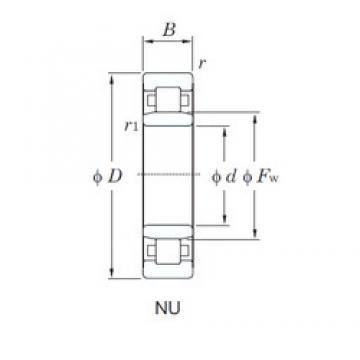 45 mm x 75 mm x 16 mm  45 mm x 75 mm x 16 mm  KOYO NU1009 cylindrical roller bearings