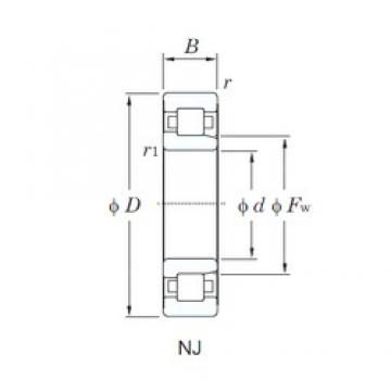 75 mm x 160 mm x 55 mm  75 mm x 160 mm x 55 mm  KOYO NJ2315R cylindrical roller bearings